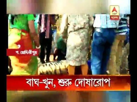 Maneka Gandhi attacks Bengal govt over tiger death incident