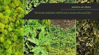 Jardins Verticais: Como são Instalados e opções disponíveis! Vertical Garden