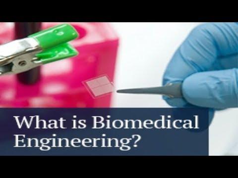Future Of Biomedical Engineering In Tamil