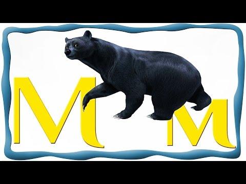 Веселый алфавит, Забавная детская песенка про буквы. Обучающее видео для детей