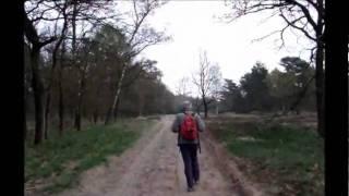 Wandeling Veluwe Zwerfpad van Oud-Milligen naar Otterlo