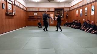 Casey Lake Nanadan Demo -Bujinkan Budo Taijutsu (Ninjutsu)