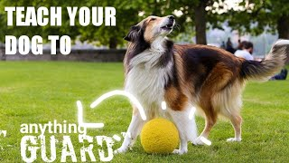 How to teach your dog watch command in hindi|how to teach a dog to protect things|dog watch training
