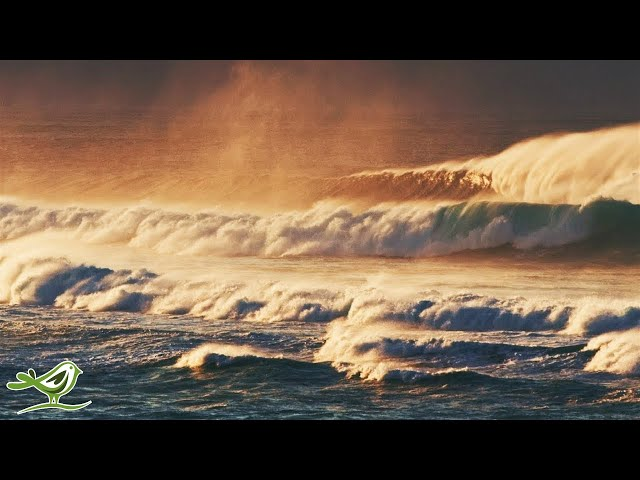 Relaxing Music & Ocean Waves - Piano Sleep Music by Soothing Relaxation