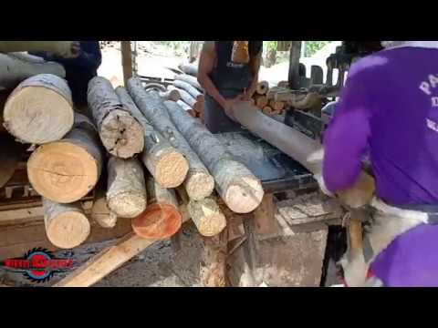 FASTEST SAWMILL IN THE EAST - YouTube