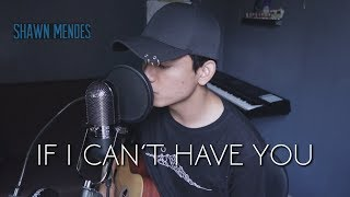 Gambar cover Shawn Mendes - If I Can't Have You