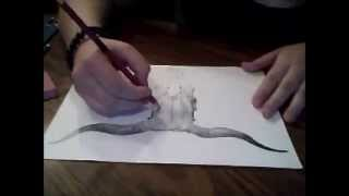 Speed Drawing: Long Horn Bull