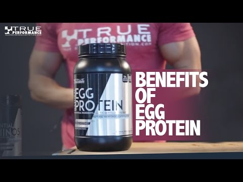 Benefits Of Egg Protein Powder
