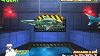 Hungry Shark Evolution altın hilesi nasıl yapılır