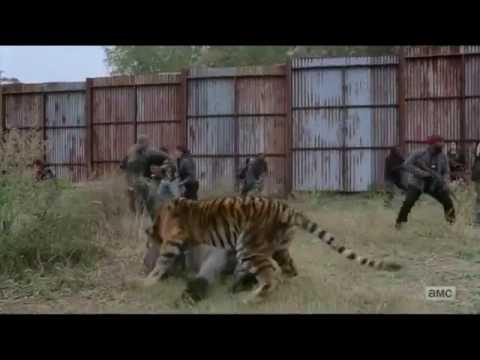 The Walking Dead Season 7 Episode 16 The Final Battle