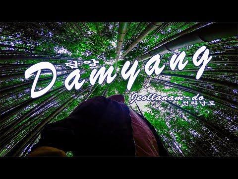 South Korea VLOG #1: Damyang(Jeollanam-do)