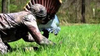 Incredible turkey hunt! Turkey reaping