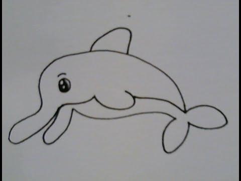 สอนวาดรูปการ์ตูนน่ารักง่ายๆ ปลาโลมาน้อย How To Draw Dolphin Cartoon