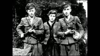 УПА песня Йшли селом партизани