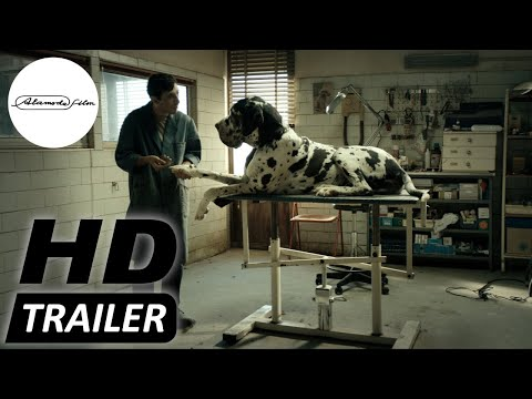 DOGMAN   offizieller Trailer deutsch HD   Jetzt im Kino