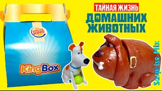 ИГРУШКИ из БУРГЕР КИНГ - Тайная Жизнь Домашних Животных King Box ВСЯ СЕРИЯ - The Secret Life of Pets