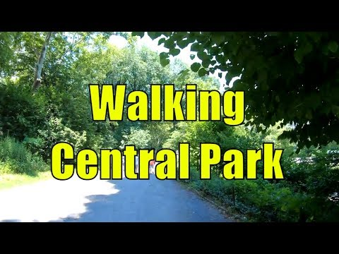 ⁴ᴷ Walking Tour of Central Park, NYC during Summer from 59th 110th Streets
