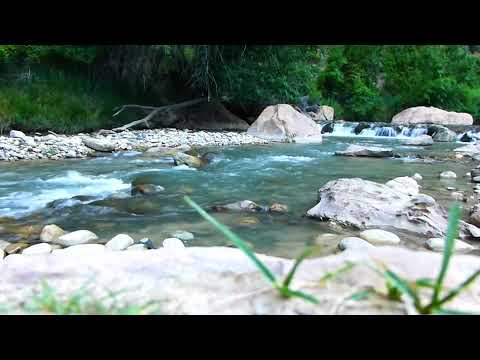 Natural Water with Birds sound || Free Background Video & Music For You tube No Copyright ||