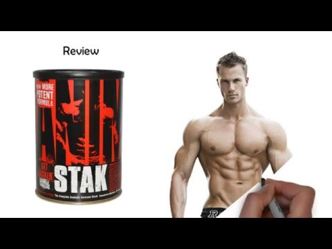 Animal Stak Review - Side Effects? Results? Learn More!