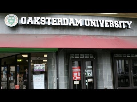 DEA Raids Marijuana College Oaksterdam University