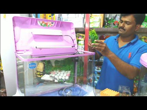 Low Cost Imported Aquarium Molded Aquarium Setup Stock Avlebale Update China Aquarium Fish Market