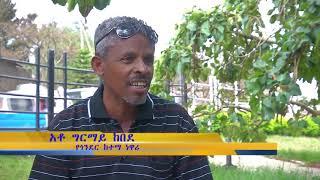 Ethiopian Gonder City   የከተሞች እናት ጎንደር የእድገት ደረጃና ያለችበትን ሁኔታ ይመልቱ