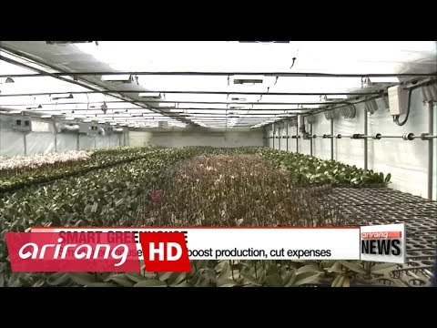 Smart greenhouse systems boost production, cut expenses