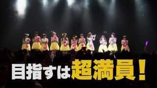 KNU3rdワンマンライブ(タイトル未定) 日時:2013年11月17日(日) 場...