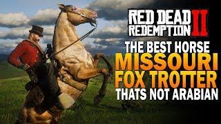 Red Dead Redemption 2 Niko Bellic