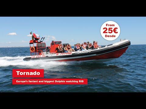 Tornardo - Seafaris - From 25€