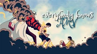 Download Lagu [ AMV ] - everybody knows (sigrid) - ONE PIECE [soundtrack-Justice league] Mp3