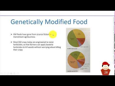 Biosphere: Genetically Modified Food (GM)