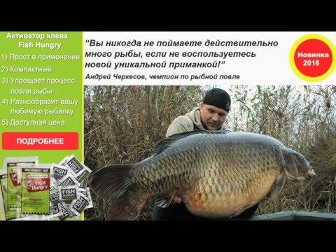 Активатор клева Fish Hungry - Поможет поймать любую рыбу