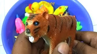 Learn Colors with Sea Animals in Ocean Blue Swimming Pool Animals Toys for kids