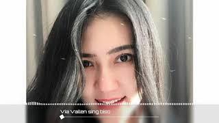 Gambar cover Via Vallen - Sing Biso