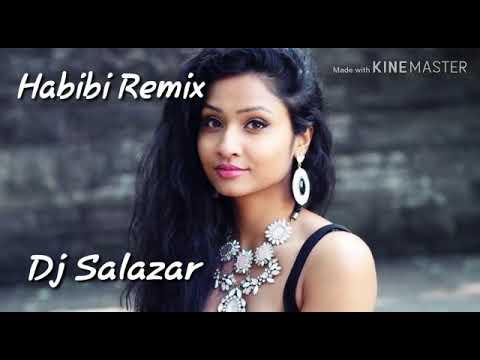 Sophia akkara Remix Dj salazar Y Dj Mauno Mauno 2019 FlamencoSalsero thumbnail