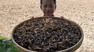 Frying 500 Crickets / Cooking Crickets With Green Onion / Eating Cricket