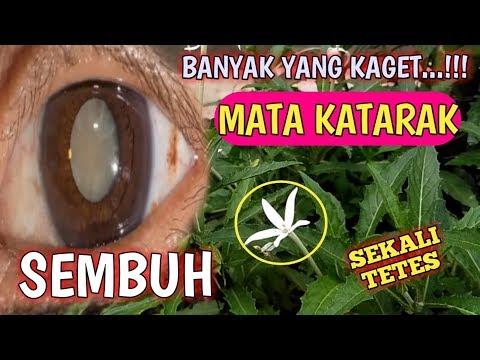 cara-mengatasi-mata-katarak-tanpa-operasi-ii-obat-mata-katarak-alami-ii-ramuan-sahabat-herbal