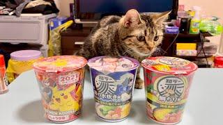 真剣にカップ麺を選ぶカメラマンの集中力を削りにきてしまった子猫w