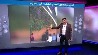 الشرطة المغربية تحقق في فيديو تعاطي لاصق السيليسيون من قبل عدد من تلاميذ المدارس