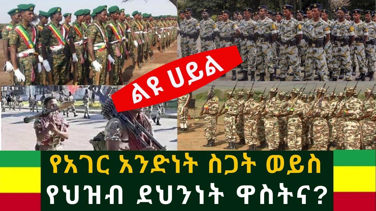 Download Ethiopia: ልዩ ሀይል የአገር አንድነት ስጋት ወይስ የህዝብ ደህንነት ዋስትና? Alfa Tube