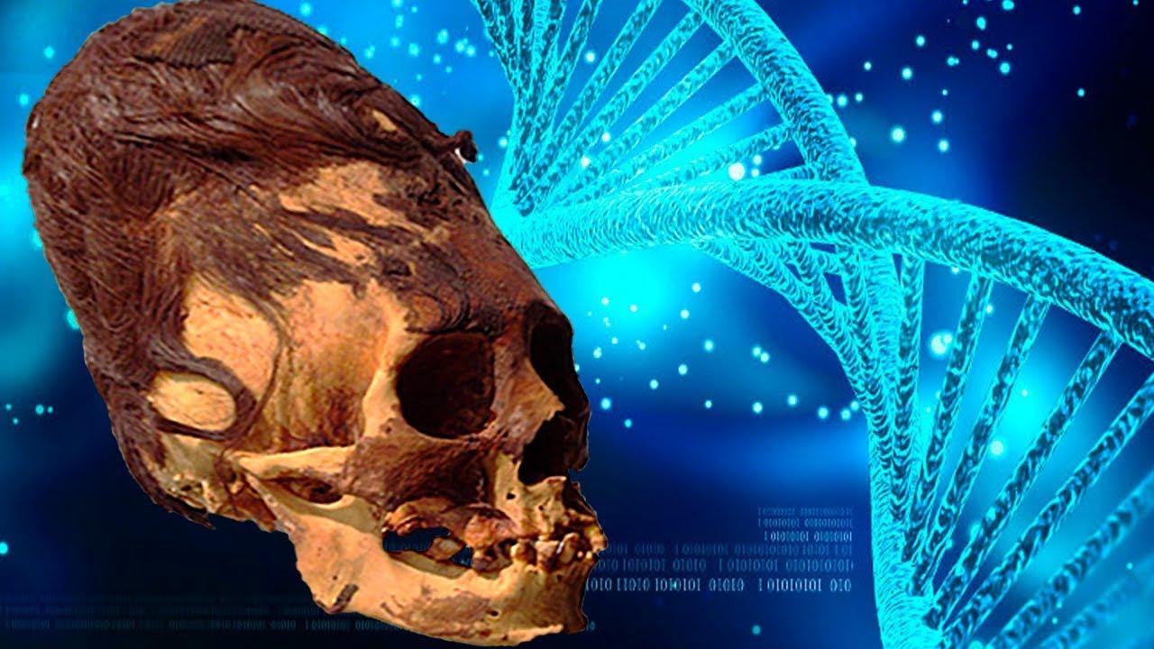 Die DNA der Paracas-SCHÄDEL Enthüllt Etwas Unerwartetes