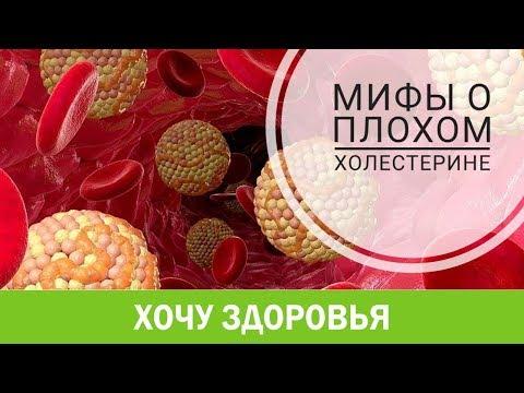 #31. МИФЫ о ПЛОХОМ ХОЛЕСТЕРИНЕ.  Холестерин, часть 2.