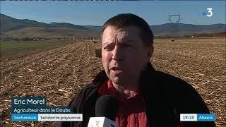 Les conséquences de la sécheresse sur l'agriculture