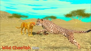 Wild Cheetah Simulator 3D - By  Turbo Rocket Games - Simulation - iTunes/Android