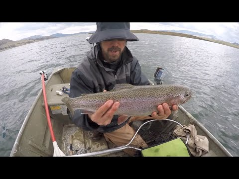 Colorado wickedfisha s1e6 slaying gold medal trout at for Green mountain reservoir fishing