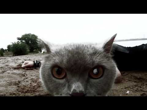 Обе-Рек feat. Nookie (гр. Слот) - Фонари