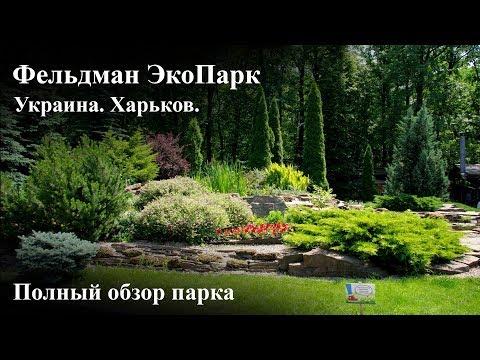 Фельдман Экопарк. Обзор зоопарка в Харькове.