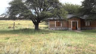 Argentina Free-range Red Stag Hunting with Outdoor Adventures