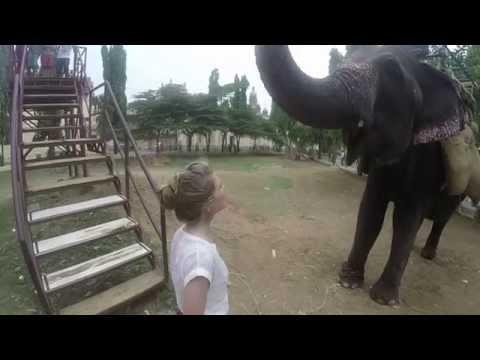 Elephant ride in Mysore, India